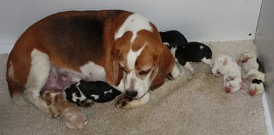 Lara mit Fredos Enkeln